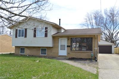 Elyria Single Family Home For Sale: 835 Hollywood Blvd