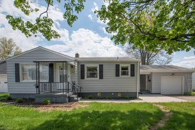 Struthers Single Family Home For Sale: 234 Smithfield St