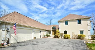 Bay Village, Cleveland, Lakewood, Rocky River, Avon Lake Single Family Home For Sale: 31922 Lake Rd