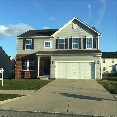 Painesville Single Family Home For Sale: 205 South Settlers Ln