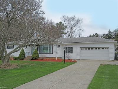 North Royalton Single Family Home For Sale: 19401 State Rd