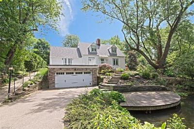 Geauga County Single Family Home For Sale: 17151 Overlook Dr
