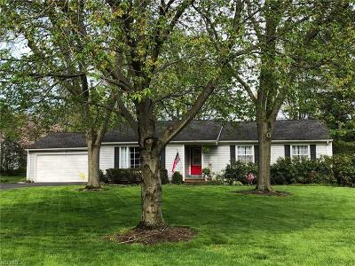 Chagrin Falls Single Family Home For Sale: 338 Hickory Hill Rd