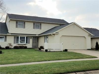 Medina County Condo/Townhouse For Sale: 702 Bent Creek Dr