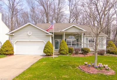 Lorain County Single Family Home For Sale: 734 Song Bird St