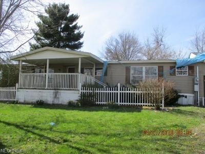 Guernsey County Single Family Home For Sale: 10200 Washington St