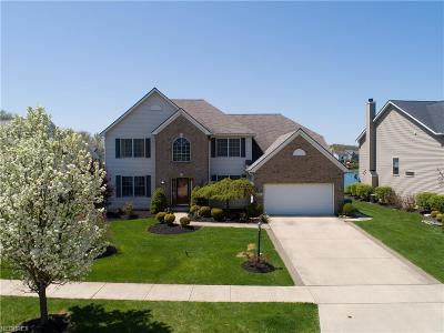 Olmsted Township Single Family Home For Sale: 9652 Maurer Dr