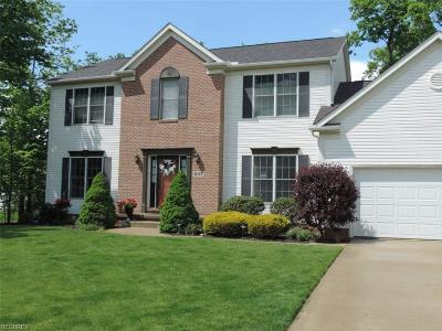 Medina Single Family Home For Sale: 537 Stratton Dr