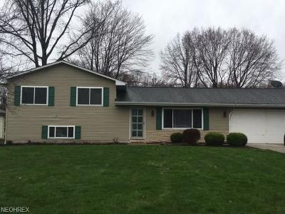 Youngstown Single Family Home For Sale: 1494 Turnberry Dr