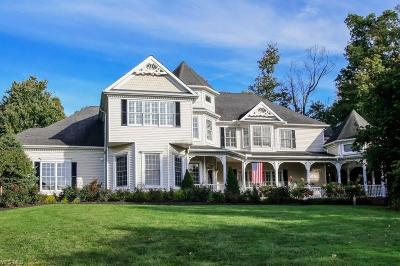 Chagrin Falls Single Family Home For Sale: 17361 Coldwater Trl
