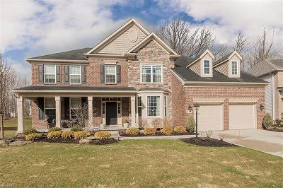 Twinsburg Single Family Home For Sale: 9411 Grace Dr