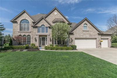 Strongsville Single Family Home For Sale: 11774 Fox Grove