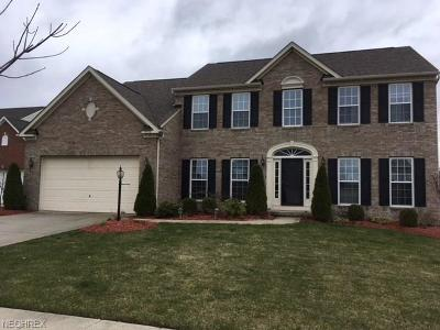 Twinsburg Single Family Home For Sale: 9458 Pam Ct