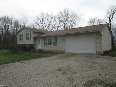 Perry County Single Family Home For Sale: 4890 Twp. Rd. 138