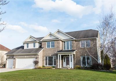 Strongsville OH Single Family Home For Sale: $365,000