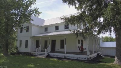Geauga County Single Family Home For Sale: 8230 Kinsman (State Route 87) Rd
