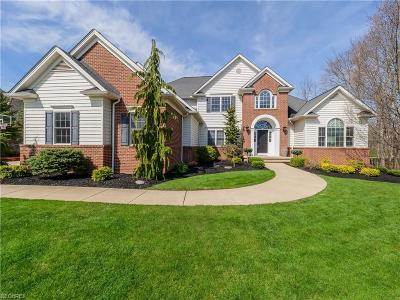 Solon Single Family Home For Sale: 7444 Royal Portrush Dr