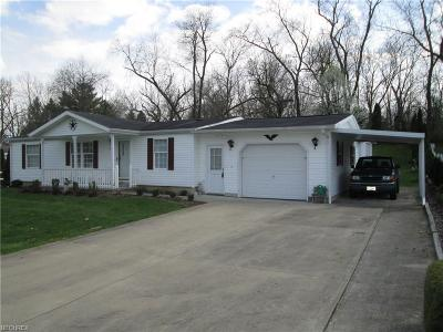 Muskingum County Single Family Home For Sale: 4085 Rodayle Dr