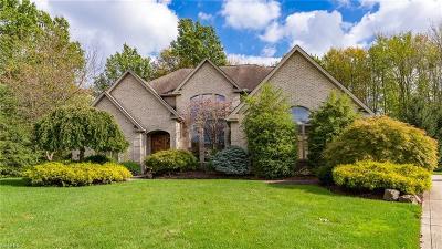 Brecksville Single Family Home For Sale: 6615 Morningside