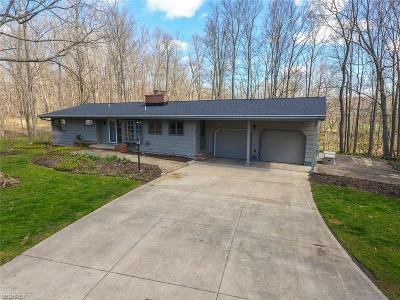 Hinckley Single Family Home For Sale: 1399 Mattingly Rd