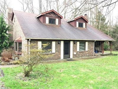 Hubbard Single Family Home For Sale: 6882 Chestnut Ridge Rd
