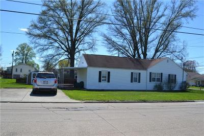 Vienna Single Family Home For Sale: 1110 13th Ave