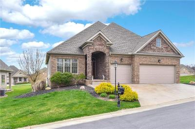 Canfield Single Family Home For Sale: 7620 Brixton Crest