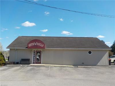Zanesville OH Commercial For Sale: $349,900