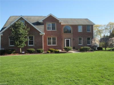 Poland Single Family Home For Sale: 7415 Cobblers Run