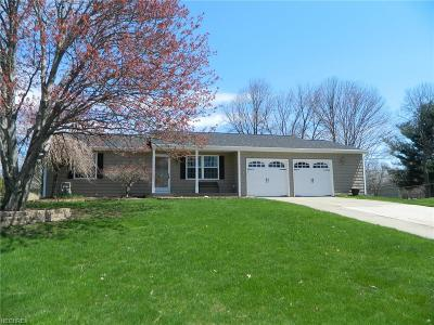 Twinsburg Single Family Home For Sale: 1651 Kasserine Ct