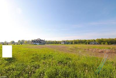 Columbia Station Residential Lots & Land For Sale: 10550 Station Road