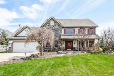 Avon Single Family Home For Sale: 39342 Stonefield Pl