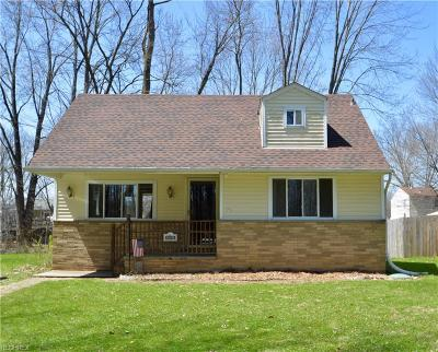 North Ridgeville Single Family Home For Sale: 5550 McKinley St