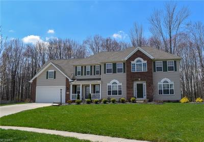 North Royalton Single Family Home For Sale: 12578 Mahican Way
