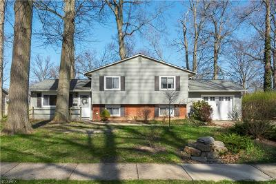 Avon, Avon Lake Single Family Home For Sale: 231 Beachwood Ave