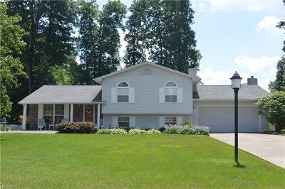 Canfield Single Family Home For Sale: 7054 Berry Blossom Dr