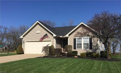 Wadsworth Single Family Home For Sale: 705 Sparrow Way