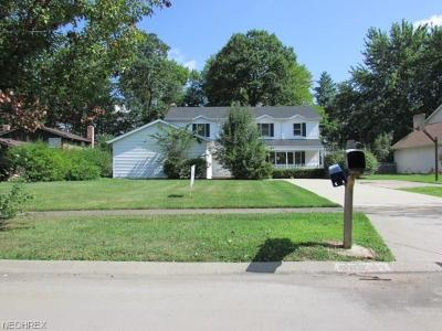 Solon Single Family Home For Sale: 36247 Meadowdale Dr
