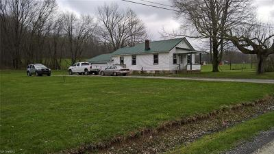 Leetonia OH Single Family Home For Sale: $65,900