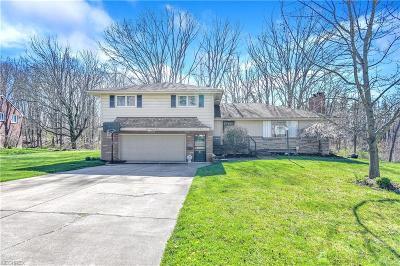 Girard Single Family Home For Sale: 1004 Park Cir