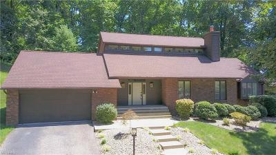 Vienna Single Family Home For Sale: 5504 13th Ave