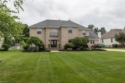 Twinsburg Single Family Home For Sale: 9390 Andrew Dr