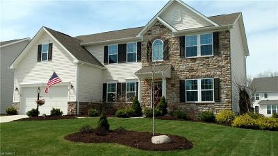 Twinsburg Single Family Home For Sale: 8166 Megan Meadow Dr