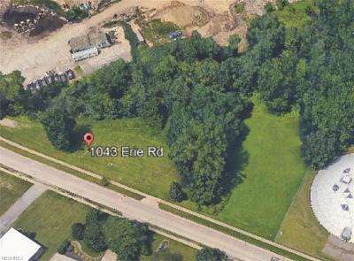 Eastlake OH Residential Lots & Land For Sale: $220,000