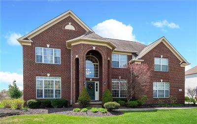 Twinsburg Single Family Home For Sale: 3170 Abrams Dr