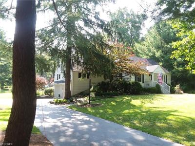Chagrin Falls Single Family Home For Sale: 7653 Birchmont Dr