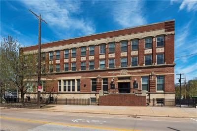 Cleveland Condo/Townhouse For Sale: 3200 Franklin Blvd #105