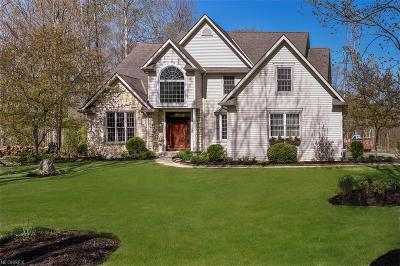Chagrin Falls Single Family Home For Sale: 17110 Abbey Rd