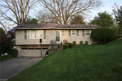 Zanesville Single Family Home For Sale: 4010 Dresden Rd