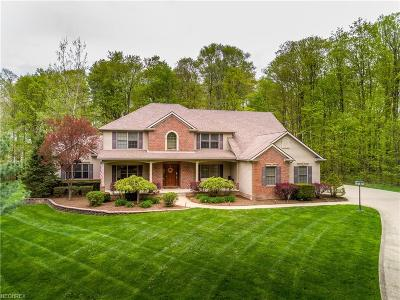 Medina Single Family Home For Sale: 5225 Linda Dr